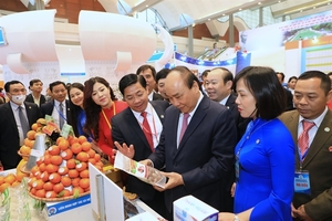 Viet Nam's cooperative economy potential has not been tapped: PM