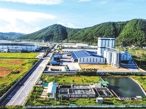 Adjustment task of the Southeastern Nghe An Economic Zone approved