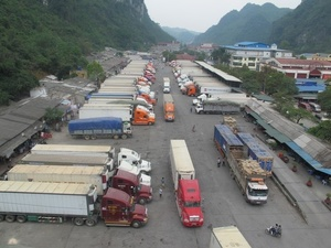 Coronavirus delays Viet Nam's agricultural exports to China