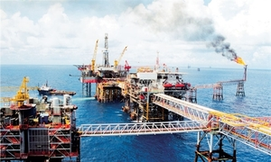 PetroVietnam exceeds January targets