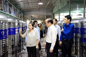 Project on growing, processing and export chain for Binh Thuan dragon fruit
