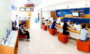 VIB receives $70 million financial package from three int'l institutions