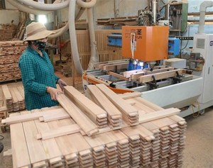 Digital transformation expected to boost export of forestry products