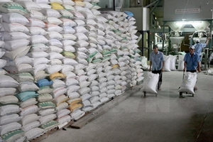 MoIT asks Government leader to continue rice exports