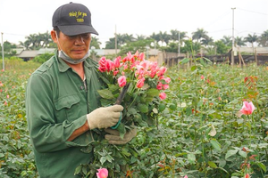 Covid-19 brings losses to flower growers