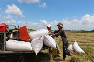 Kien Giang, Long An provinces want rice export ban lifted