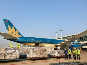 Vietnam Airlines boosts cargo transportation