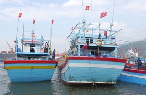 Minister urges provinces to boost fight against IUU fishing