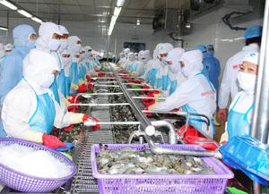 Shrimp exporters in Mekong Deltafacechallenges amid Covid-19 epidemic