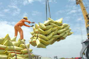 MoIT issues rice export quotas this month under PM permission