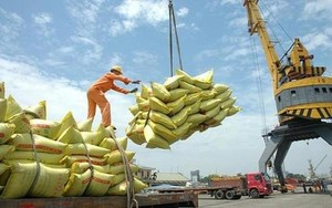MoIT proposes removing rice export quota
