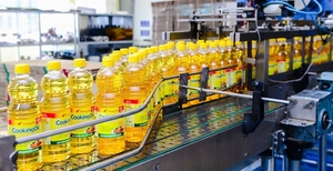 KIDO Group reports steady sales in oil and frozen businesses