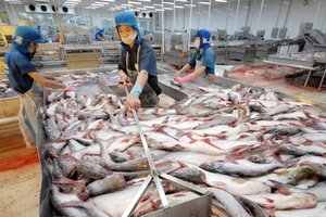 VASEP requests support for seafood exporters