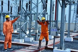 EVN sees profit up 38 per cent in 2019
