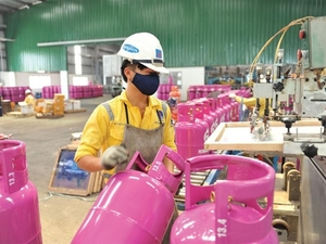 Energy firms drive VN market