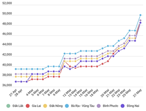 Viet Nam domestic pepper prices hit one-year high