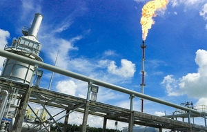 PV Gas to overcome pandemic in 2020: CEO