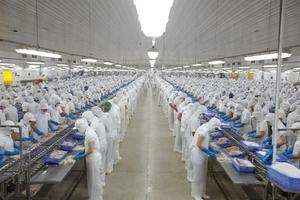 Aquatic companies' profits hurt by disease
