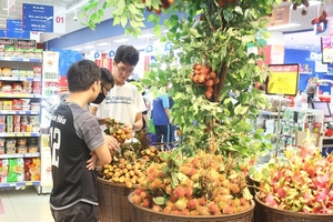 Supermarkets to help lychee farmers sell their produce