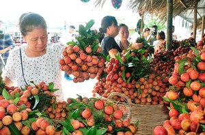 Veg, fruit exports exceed $1.5 billion in first half