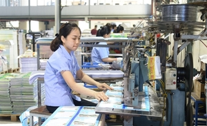 VEPR: Viet Nam's GDP up 5.3% this year