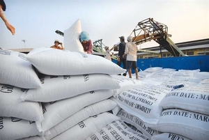 Viet Nam's rice export price stands at lowest level over past two months