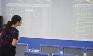 Large-cap stocks lift VN market