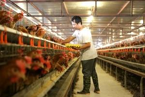 Agriculture ministry bullish on export targets despite pandemic