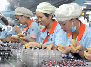 Dong Nai Province to expand industrial zones