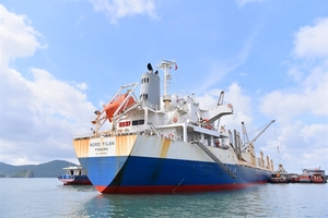 Viet Nam receives first coal batch imported from the US