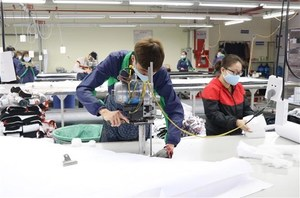 Sportswear firms eye boosting exports to the Netherlands