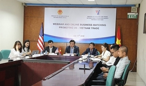 VN, US firms join hands to curb pandemic toll and seek business opportunities