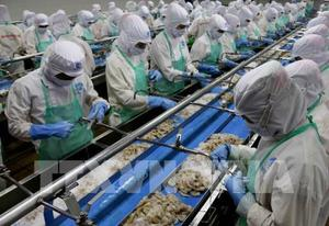 Ca Mau seeks ways to achieve export target after Covid-19 slump