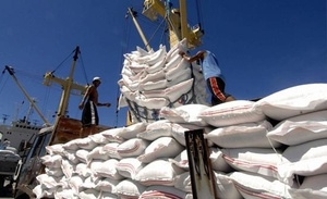 Viet Nam to increase rice exports to EU under EVFTA