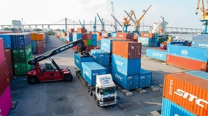 Dinh Vu Port to pay dividend in cash