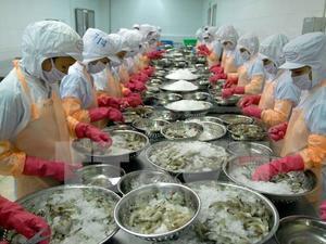 Viet Nam shrimp exports to South Korea to edge up: VASEP