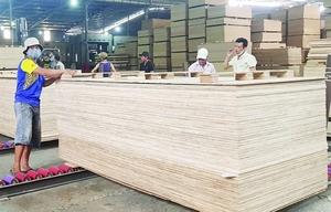 Local enterprises still not aware of anti-dumping investigations