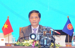 ASEAN+3 determined to promote economic development and reduce risks from COVID-19