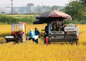 Policies needed to promote mechanical engineering in agriculture