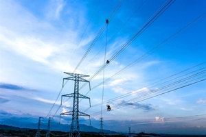 Better policies needed for independent power producer: experts