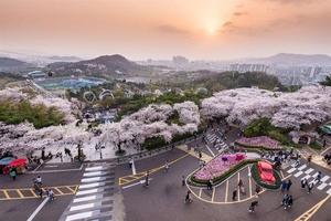 Vietjet to resumeViet Nam-South Korea air service
