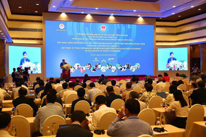 Viet Nam needs consultation to push up economic development