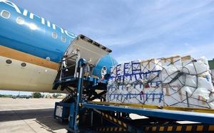 Airport logistics companies report profits despite COVID-19