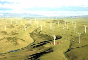 Hapaco eyes investment in VND4-trillion wind power project