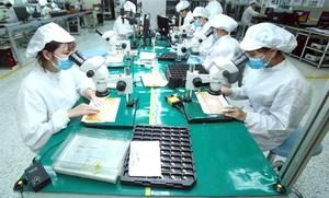 Viet Nam, US target sustainable trade ties
