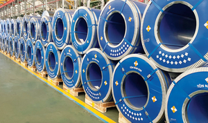 Nam Kim Steel registers to sell 10 million treasury stocks