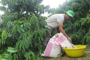 Fertiliser prices continue to increase: MoIT