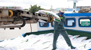 Ca Mau Fertiliser's profit before tax expected to rise 8 per cent in the first half of 2021