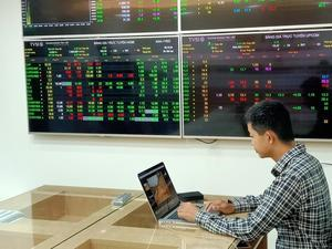 Shares continue rally trend, VN-Index gains over 5 points