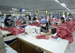 Potential for Vietnamese exports to Africa: workshop